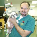 Surefire Tips for Keeping Pet Medical Costs Low