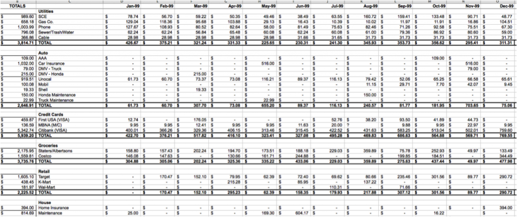 domestic budget spreadsheet