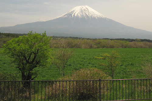 mt. fuji in front of green field