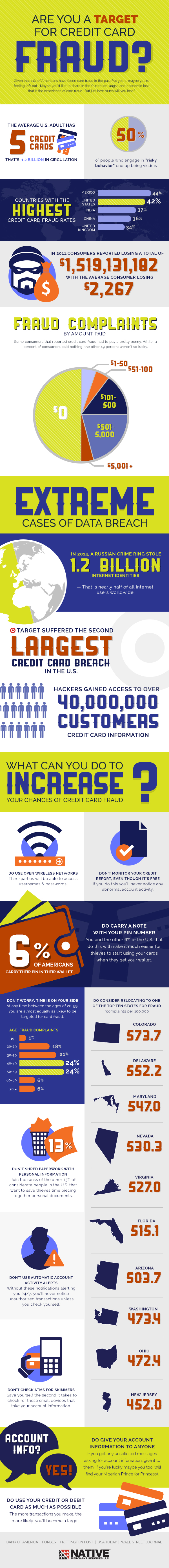 Credit Card Fraud Infographic