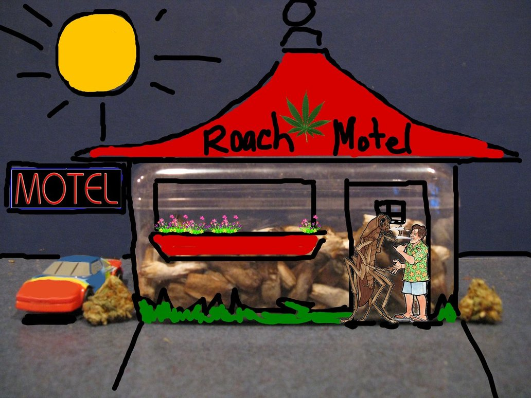roach_motel_happilydayzed