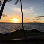 Black Coffee: Gone Today, Here in Maui