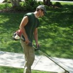 What to Look for When Hiring a Professional Gardening Service